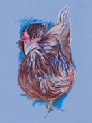 Chicken Pastels - Brown Easter Egger Hen by MM Anderson