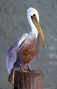 Yellow Beak Painting Metal Prints - Brown Pelican Metal Print by Elaine Hodges