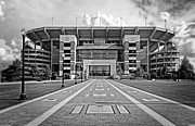 Denny Stadium Framed Prints - Bryant Denny Stadium 2011 Framed Print by Ben Shields
