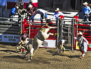 Ron Roberts Photography Greeting Cards Prints - Bull Riding Print by Ron Roberts