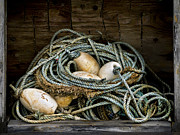 Fishing Posters - Buoys in a Box Poster by Carol Leigh