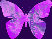 Adri Turner - Butterfly Abstract