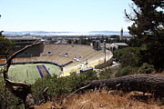Sports Fields Framed Prints - Cal Golden Bears California Memorial Stadium Berkeley California 5D24670 Framed Print by Wingsdomain Art and Photography