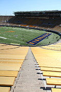 College Campuses Metal Prints - Cal Golden Bears California Memorial Stadium Berkeley California 5D24696 Metal Print by Wingsdomain Art and Photography