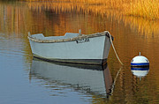 Autumn Photographs Framed Prints - Cape Cod Harbor Dinghy Framed Print by Juergen Roth