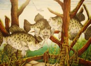 Reallism Art - Captivating Crappies by Bruce Bley