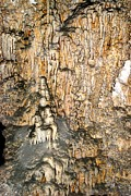 Stalagmite Prints - Carlsbad Caverns 16 Print by T C Brown