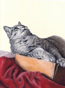 Cat Portraits Pastels Prints - Cat in a Box Print by Pamela Humbargar