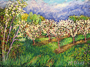 Cherry Blossoms Paintings - Cherry Orchard Glow by Madonna Siles