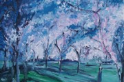 Washington Dc Drawings - Cherry Trees Impressionism by Eric  Schiabor