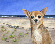 Chihuahua Framed Prints - Chihuahua at Sea Isle City New Jersey Framed Print by Peggy Dreher