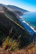 Adam Pender - Cliff Grass at Big Sur