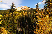 Autumn Trees Prints - Colorado Mountains Print by Jeff  Swan