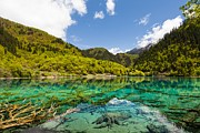 Fototrav Print - Colorful Lake at Jiuzhaigou China