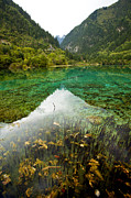 Colors Of Tibet Jiuzhaigou Fine Art Print by Sundeep Bhardwaj Kullu sundeepkulluDOTcom