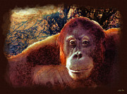 Ape Mixed Media Posters - Conversations with an Orangutan Poster by Skye Ryan-Evans