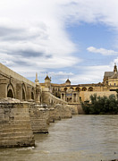Southern Province Posters - Cordoba From The Roman Bridge Poster by Lorraine Devon Wilke