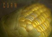 Thanksgiving Art Prints - Corn Print by Elena Nosyreva