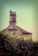 Stone Roof Framed Prints - Cottage Behind a Hedge Framed Print by Jill Battaglia