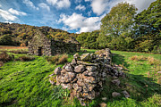 Ruins Digital Art Metal Prints - Cottage Ruin Metal Print by Adrian Evans