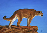 Desert Wildlife Paintings - Cougar Cliff by Crista Forest