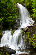Mt Rainier Stream Framed Prints - Cougar Falls Framed Print by Roger Reeves  
