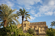 Great Mosque Prints - Courtyard Garden and Mezquita Cathedral of Cordoba Print by Artur Bogacki