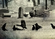 Gothicolors Donna Snyder - Crow Fight