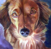 Puppies Painting Originals - Dachshund Sparkle Eyes by Lyn Cook