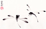 Oiyee  At Oystudio - Dance of the Dragonflies