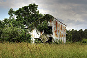 Rusted Tin Roof Photos - Dangling Barn Door by Benanne Stiens