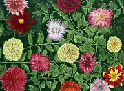 Floral Drawings Originals - Directional Dhalias by Clayton Reynolds
