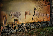 Shed Metal Prints - Dirty Linen Metal Print by Robin-Lee Vieira