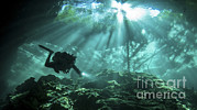 Water In Cave Prints - Diver Passes Through Light Beams Print by Karen Doody