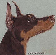Pinscher Drawings Posters - Doberman Pinscher Vignette Poster by Anita Putman