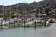 Wingsdomain Art and Photography - Docks at Sausalito California 5D22697