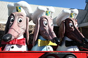 Wingsdomain Art and Photography - Doggie Diner Dogs - 5D20931