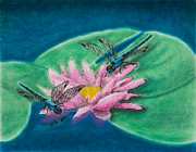 Jeanette Kabat - Dragonflies on Water Lily
