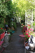 Alleys Posters - Eclectic Alley Garden In Downtown Sonoma California 5D24467 Poster by Wingsdomain Art and Photography
