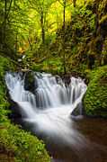 Peter Lik Photos - Emerald Falls by Aaron Reed
