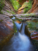 Oak Creek Canyon Posters - Energy Poster by Peter Coskun