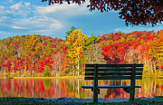 Park Benches Photos - Enjoy the View  - Fine Art by Lynn Bauer by Lynn Bauer