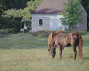 Cape Cod Paintings - Equestrian Al Fresco by OMalley Keyes