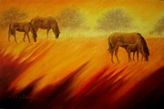 American Bison Originals - Equine Series #2 by Kelly Killough