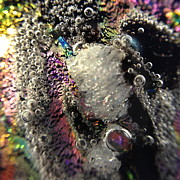 Close Up Glass Art Metal Prints - Escape Metal Print by Gaby Tench