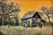 Old Cabins Prints - Fall Abandoned Print by Steve McKinzie