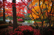 Manito Park Framed Prints - Fall Colors in Manito Park Framed Print by James Richman