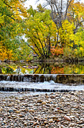 Fort Collins Art - Fall on the Poudre by Keith Ducker