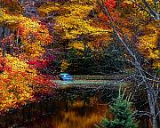 Autumn Nature Trees Framed Prints - Fall Pond and Boat Framed Print by Tom Mc Nemar