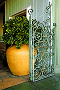 Fancy Gate And Plain Pot Print by Ben and Raisa Gertsberg
